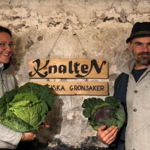 Knalten Ekologiska Grönsaker